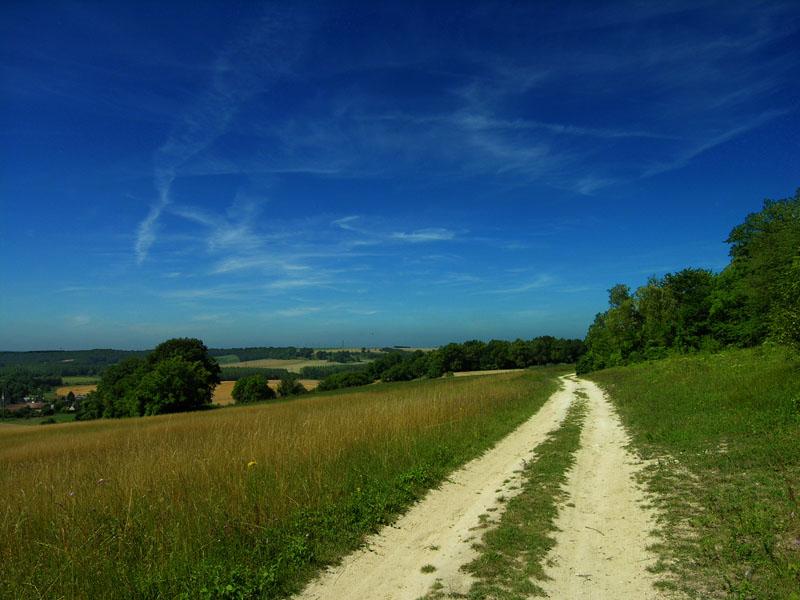 paysage_picard