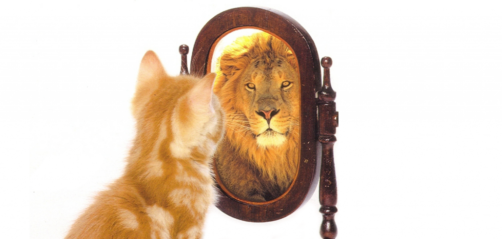 confidence-farzana-featured-1024×489